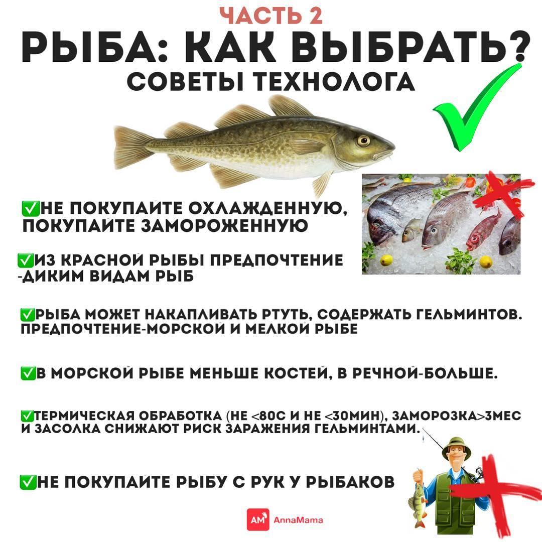 Какую Рыбу Использовать Для Диеты. Какая рыба для похудения самая полезная? ТОП-6 диетических видов