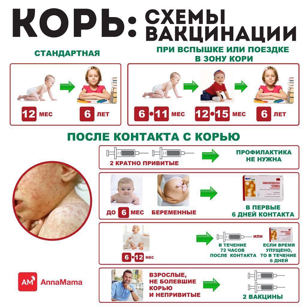 Прививка от кори схема вакцинации взрослым