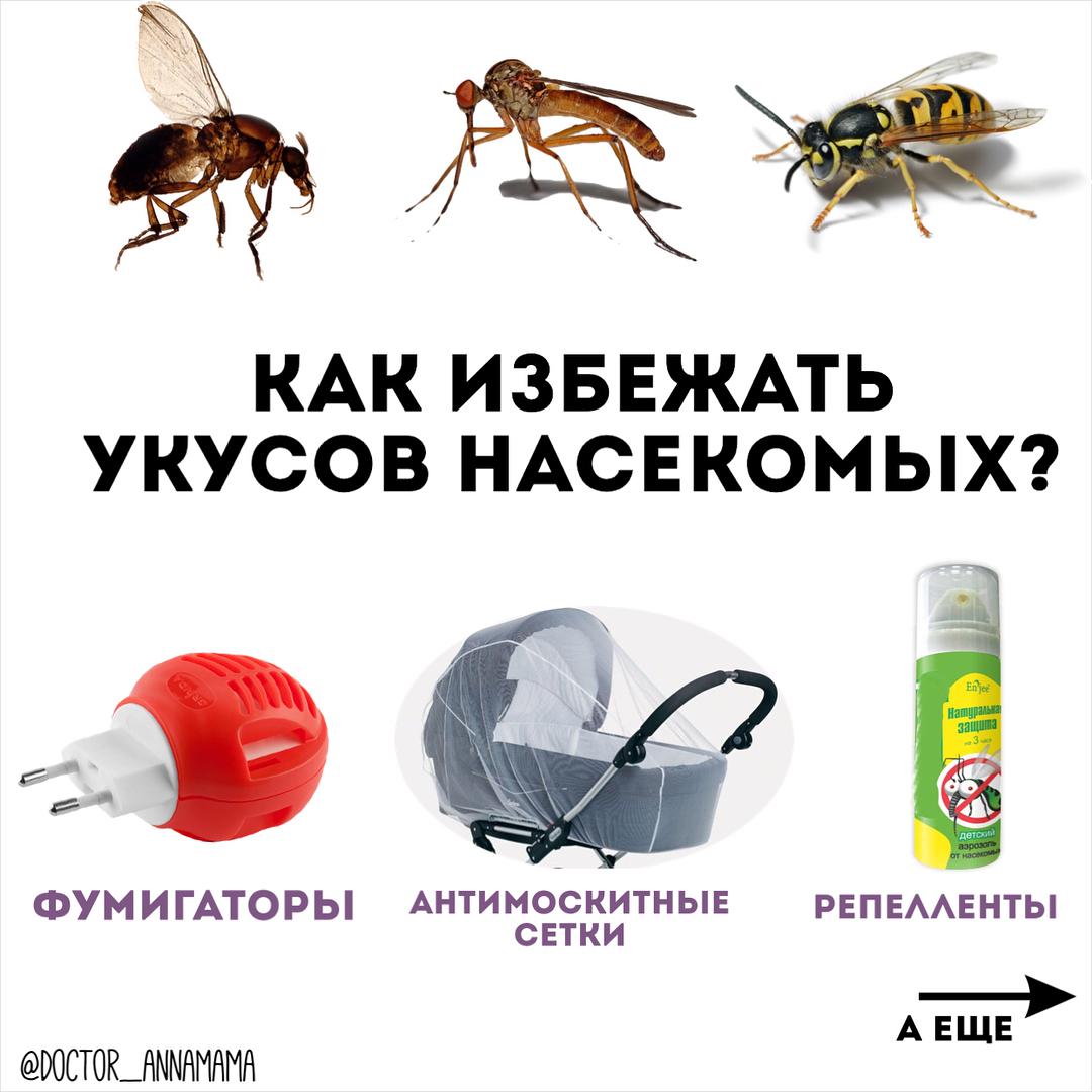 Первая помощь при укусе насекомых картинки